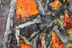 Diana Carey, Wildfire (detail)