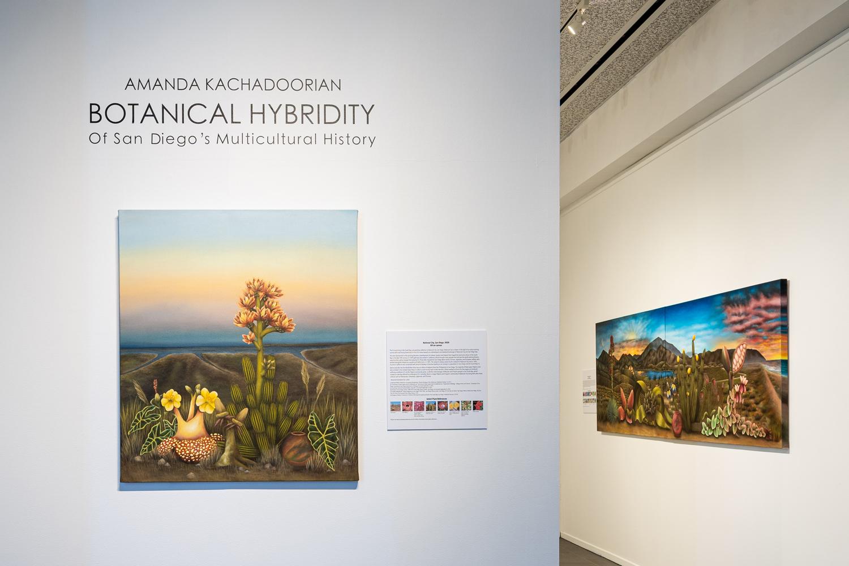 Botanical Hybridity, gallery installation