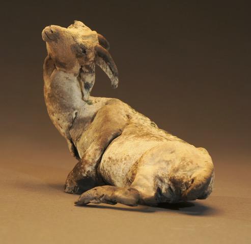 Little Goat, 2010