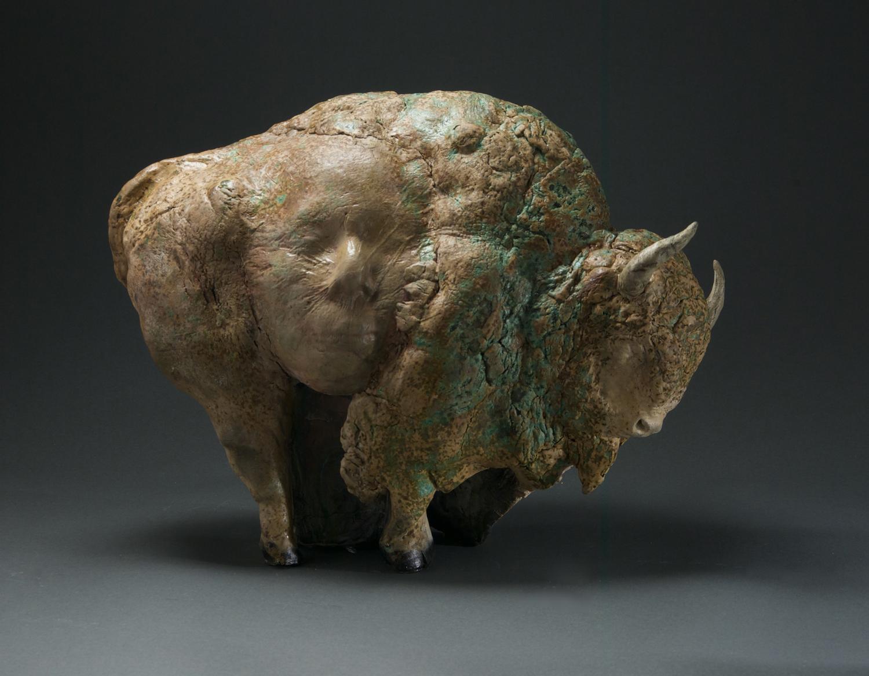Bison, 2006