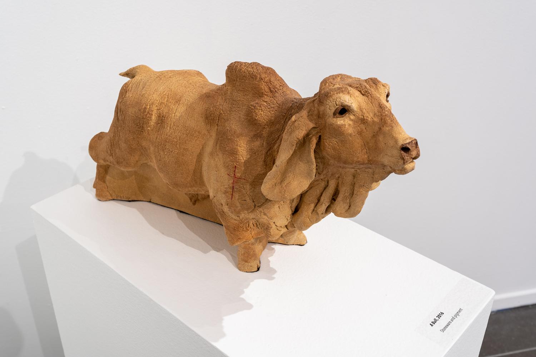 A Bull, 2016
